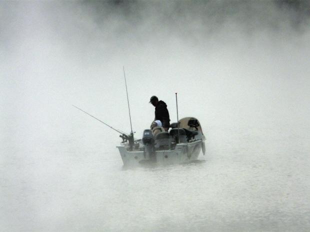 banco de niebla tecnica asertiva