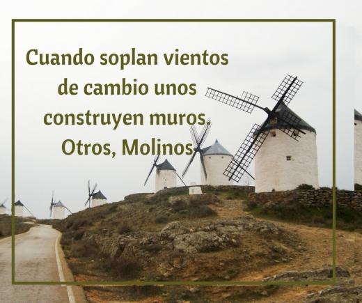 cuando soplan vientos de cambio unos construyen muros, Otros molinos